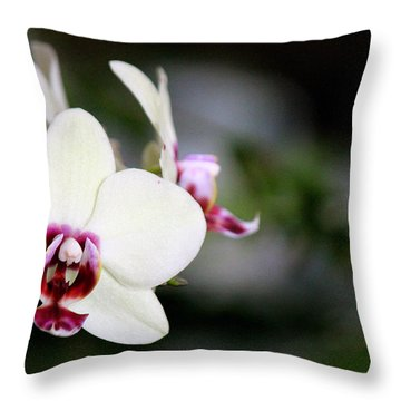 Creaminess Throw Pillow