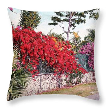 Creations Glory Throw Pillow