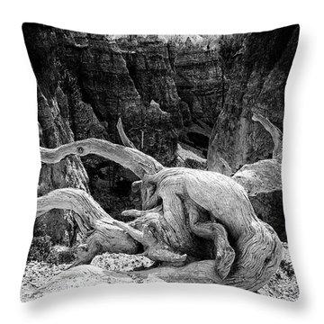 Creatures Of Bryce Canyon Throw Pillow