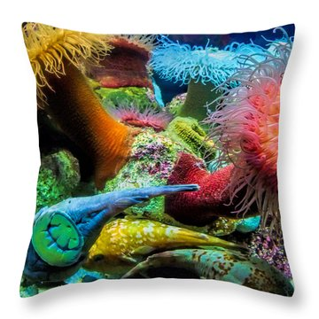 Creatures Of The Aquarium Throw Pillow