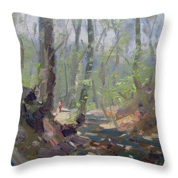 Creek At Lockport Natural Trail Throw Pillow