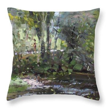 Creek At Three Sisters Islands Throw Pillow