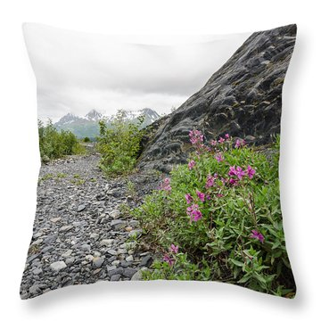 Creek Bed Flowers Throw Pillow