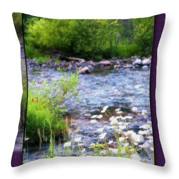Throw Pillow featuring the photograph Creek Daisys by Susan Kinney