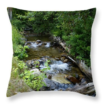 Throw Pillow featuring the photograph Creek On Mt. Spokane 1 by Ben Upham III