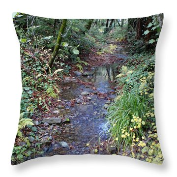 Throw Pillow featuring the photograph Creek On Mt Tamalpais 2 by Ben Upham III