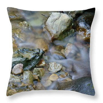 Creek On Mt Tamalpais Throw Pillow
