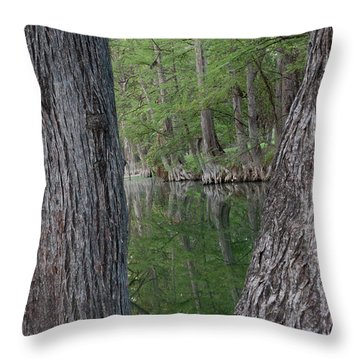Creek Reflections Throw Pillow