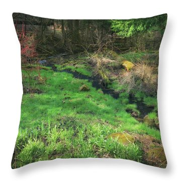 Creek - Spring At Retzer Nature Center Throw Pillow by Jennifer Rondinelli Reilly - Fine Art Photography
