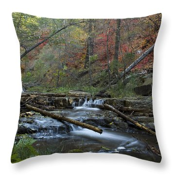 Creekside Color Throw Pillow by Sue Cullumber