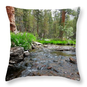 Creekside Throw Pillow by Paul Foutz