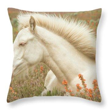 Cremello Beauty Throw Pillow