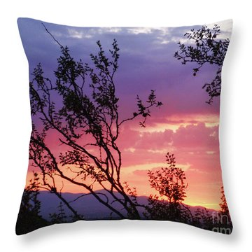 Creosote Sky Throw Pillow by Suzette Kallen