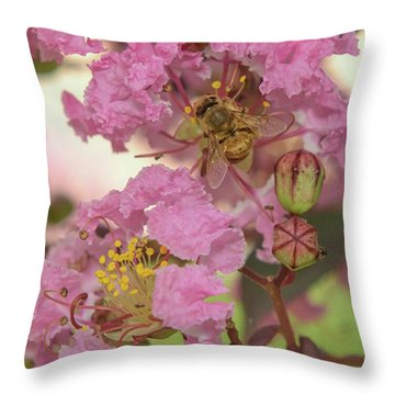Crepe Myrtle And Bee Throw Pillow by Olga Hamilton