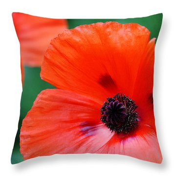 Crepe Paper Petals Throw Pillow by Debbie Oppermann