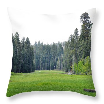 Throw Pillow featuring the photograph Crescent Meadow by Kyle Hanson