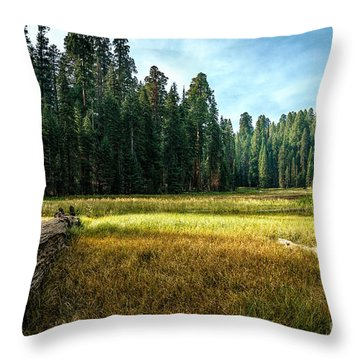 Crescent Meadows Sequoia Np Throw Pillow