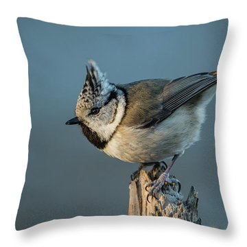 Throw Pillow featuring the photograph Crest by Torbjorn Swenelius