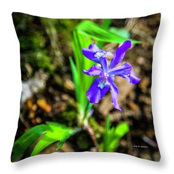 Crested Dwarf Iris Throw Pillow