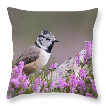 Crested Tit In Heather Throw Pillow