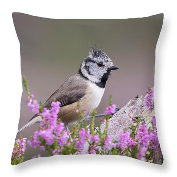 Throw Pillow featuring the photograph Crested Tit In Heather by Karen Van Der Zijden