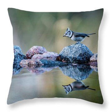 Crested Tit's Reflection Throw Pillow