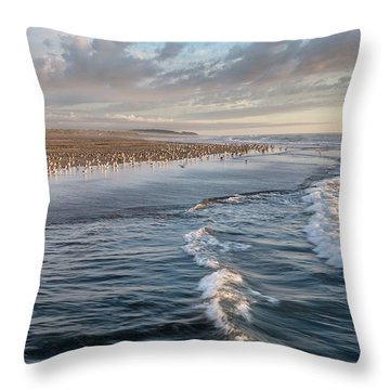 Crests And Birds Throw Pillow by Greg Nyquist