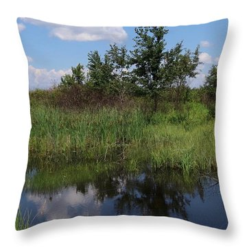 Crex Meadows Throw Pillow