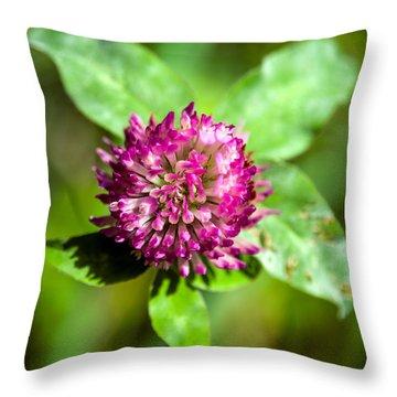 Crimson And Clover Throw Pillow by John Haldane