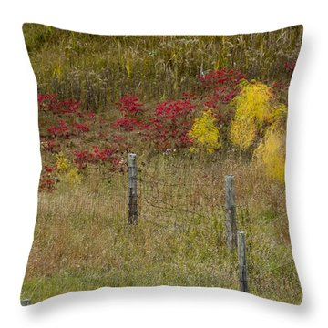 Crimson And Gold Throw Pillow