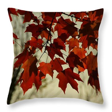 Throw Pillow featuring the photograph Crimson Red Autumn Leaves by Chris Berry