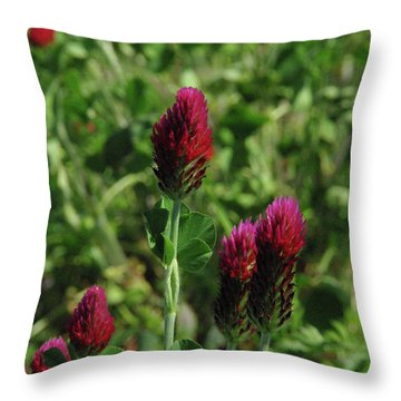Crimson Clover Throw Pillow by Robyn Stacey