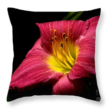 Throw Pillow featuring the photograph Crimson Day Lily by Kenny Glotfelty