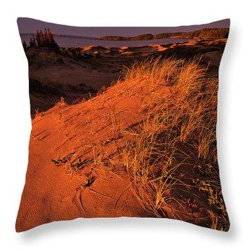 Crimson Dunes Throw Pillow