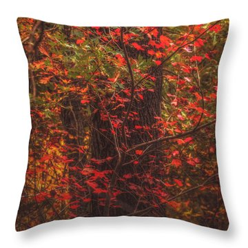 Crimson Fall Throw Pillow