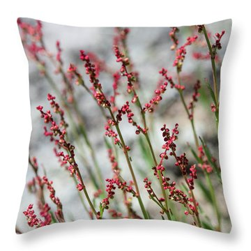 Crimson Field Throw Pillow
