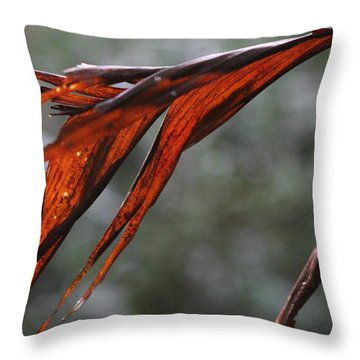 Crimson Leaf In The Amazon Rainforest Throw Pillow