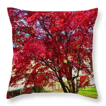 Crimson Radiance Throw Pillow