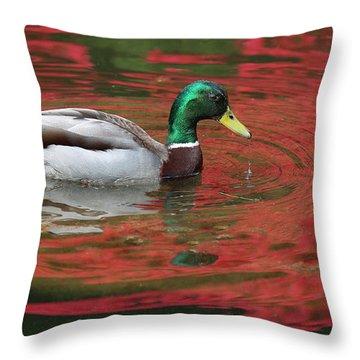 Throw Pillow featuring the photograph Crimson Reflections by Elvira Butler