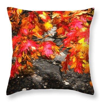 Crimson Splendor II Throw Pillow