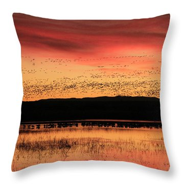 Crimson Sunset At Bosque Throw Pillow