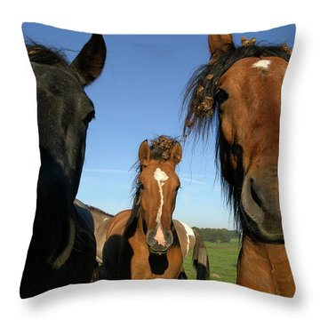 Criollo Mares I Throw Pillow