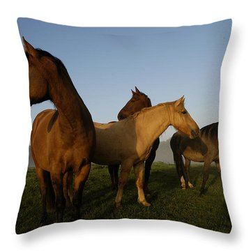 Criollo Mares Iv Throw Pillow