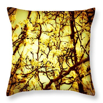 Crip L Throw Pillow by Robin Coaker