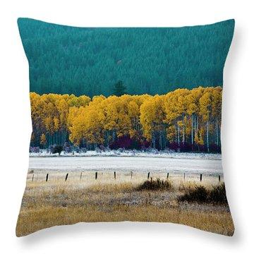 Crisp Aspen Morning Throw Pillow
