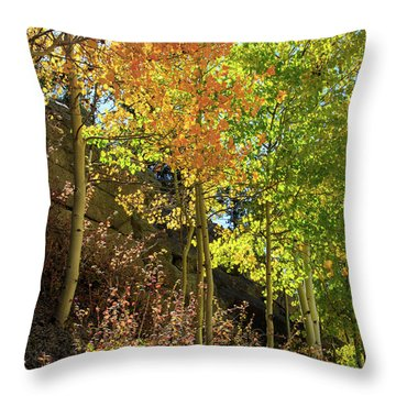 Throw Pillow featuring the photograph Crisp by David Chandler