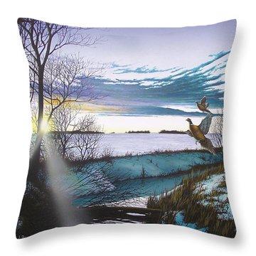 Crisp Winter Light Throw Pillow