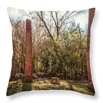 Crocheron Columns Throw Pillow by Phillip Burrow