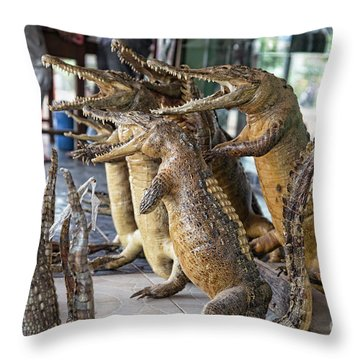 Crocodiles Rock  Throw Pillow by Chuck Kuhn