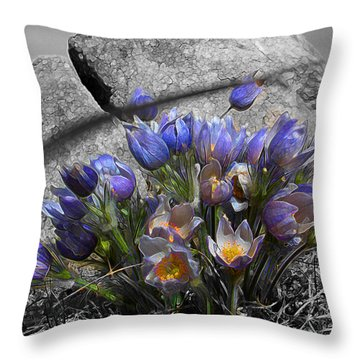 Crocus - Between A Rock And You Throw Pillow by Stuart Turnbull